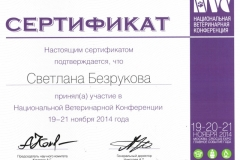 bezrukova-svetlana-2014-konf
