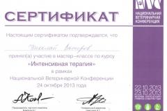 vostrov-nikolaj-2013-intensivnaya-terapiya