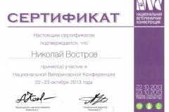 vostrov-nikolaj-2013-konferenc