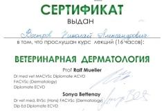 vostrov-nikolaj-2013-vet-dermatologiya-1