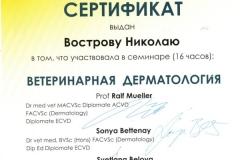 vostrov-nikolaj-2013-vet-dermatologiya-2
