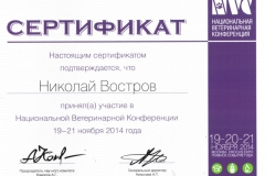 vostrov-nikolaj-2014-konferenc